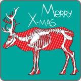 Sceleton de los ciervos de Navidad Imagen de archivo libre de regalías