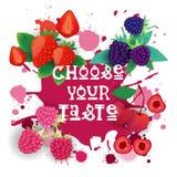 Scelga il vostro alimento di Logo Colorful Sweet Beautiful Delicious del caffè della raccolta delle bacche dell'insegna del gusto Immagine Stock