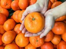 Scelta dell'arancia Fotografie Stock Libere da Diritti