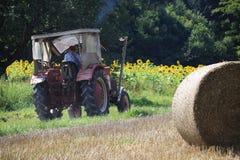 Scena agricola Nel paesaggio agricolo di estate, l'agricoltore sta venendo a lavorare Fotografia Stock