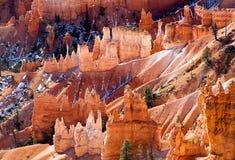 Scena al parco nazionale del canyon di Bryce nell'inverno immagine stock