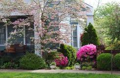 Scena all'aperto di fioritura della primavera fotografia stock libera da diritti