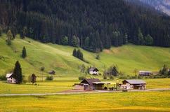 Scena all'aperto variopinta nelle alpi austriache Giorno soleggiato nel villaggio di Gosau sulla montagna di Grosse Bischofsmutze Immagini Stock