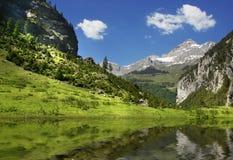 Scena alpina Immagini Stock Libere da Diritti