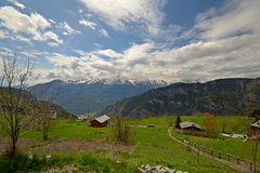 Scena alpina Immagini Stock