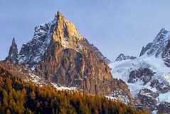Scena alpina con i larici Fotografie Stock