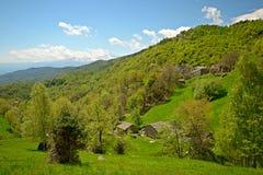 Scena alpina idilliaca Immagini Stock