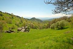 Scena alpina idilliaca Fotografia Stock