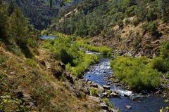 Scena americana della natura del fiume Fotografie Stock Libere da Diritti