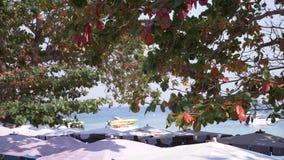 Scena ammucchiata della spiaggia di sabbia con la gente turistica irriconoscibile sfuocatura, 4k, rallentatore archivi video