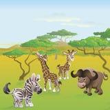 Scena animale del fumetto di safari africano sveglio royalty illustrazione gratis