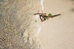 Scena astratta di un ramoscello bagnato sulla sabbia della spiaggia su una riva del lago immagine stock