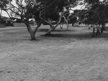 Scena in bianco e nero immagini stock libere da diritti