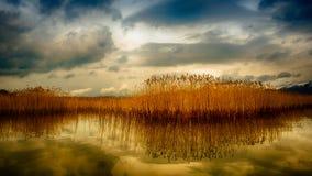 Scena calda del lago di inverno Immagine Stock Libera da Diritti