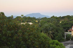 Scena caraibica fertile Fotografia Stock Libera da Diritti