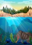Scena con i pini e subacqueo Fotografie Stock
