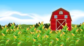 Scena con il campo di grano illustrazione di stock