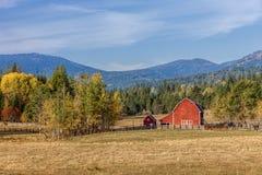 Scena del cortile in autunno Immagine Stock