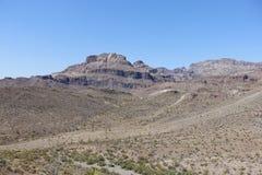 Scena del deserto fotografie stock libere da diritti