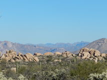Scena del deserto Immagini Stock Libere da Diritti