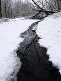 Scena del flusso di inverno in Illinois Fotografia Stock