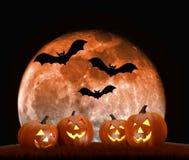 Scena del fondo di Halloween con la luna piena, le zucche ed i pipistrelli Fotografie Stock Libere da Diritti