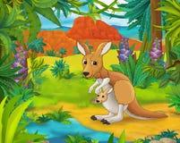 Scena del fumetto - animali selvaggi dell'america - caricatura - canguro Fotografia Stock