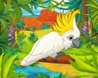 Scena del fumetto - animali selvaggi dell'america - caricatura - pappagallo Immagini Stock Libere da Diritti