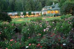 Scena del giardino di notte immagini stock libere da diritti