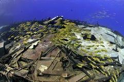 Scena del naufragio Fotografia Stock