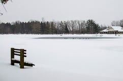 Scena del parco di inverno Immagini Stock