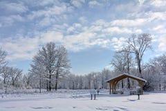 Scena del parco di inverno di Snowy Immagine Stock