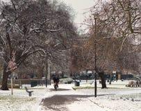 Scena del parco di inverno dopo precipitazioni nevose a Londra immagine stock