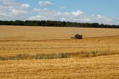 Scena del raccolto Fotografia Stock Libera da Diritti