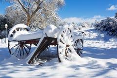 Scena 01 del vagone di inverno Immagine Stock Libera da Diritti