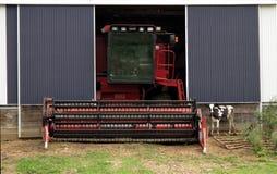 scena dell'azienda agricola, mucca e un combine Immagine Stock