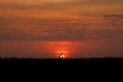 Scena della campagna di tramonto Immagini Stock Libere da Diritti