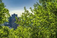 Scena della città di Montreal Fotografie Stock