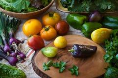 Scena della cucina appena degli alimenti eccellenti lavati compreso il cetriolo, le cipolle porpora, i verdi misti, i pomodori, i fotografie stock