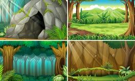 Scena della foresta Fotografia Stock