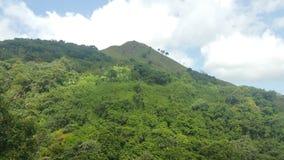 Scena della montagna Fotografie Stock