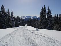 Scena della montagna Fotografia Stock