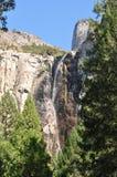 Scena della montagna del terreno boscoso Fotografia Stock Libera da Diritti