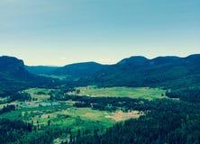 Scena della montagna di Colorado Fotografia Stock