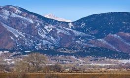 Scena della montagna in inverno con il bestiame Fotografie Stock Libere da Diritti