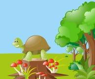 Scena della natura con la tartaruga sul ceppo illustrazione di stock