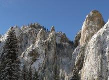Scena della natura di inverno dello Snowy in Yosemite Immagine Stock Libera da Diritti