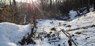 Scena della natura sul pomeriggio freddo fotografie stock