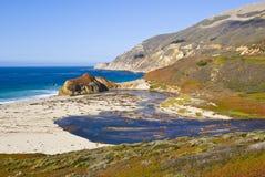 Scena della natura sulla baia del monterey Fotografie Stock Libere da Diritti