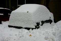 Scena della neve Fotografie Stock Libere da Diritti